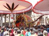 Arriving in Palanquin