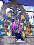Parthasarathi on embar sattrumarai day