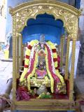 Thirukkachi Nambigal in Mena Pallakku Vahanam1.JPG