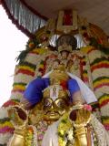 Sri Bakthavatsalan in Garuda sevai