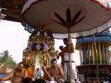 Sri Bhakthavatsalan in Garudasevai-2