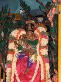 Pinnakalai vahanam - 1st day - closeup.jpg