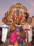 Narasimhar on garuda sevai 2.JPG