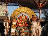 Sri Narasimhar in soorya prabhai - 4th day morning.JPG