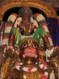 5th Day evening - Hanumantha vAhanam.JPG