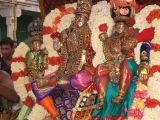 8th day Morning - Lakshmi Narasimhar Thirukkolam1.JPG
