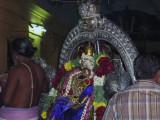 Thayar on Hamsa Vahanam.JPG
