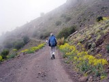 walking on 'piste' near ouaneskra
