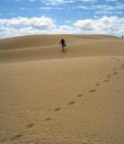 essaouira-dunes