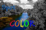 Assigment: Spot Color