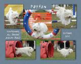 Bransford 11x14 Payton Laminated Plaque