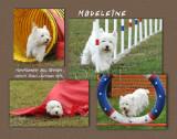 Bransford 11x14 Madeleine Laminate Plaque