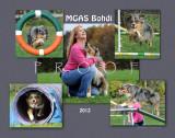 Moss 11x14