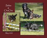 Smith 8x10 Salsa & ChaCha