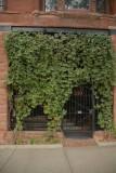 A Green Gate