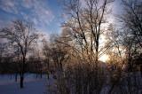 Mini Ice Storm 2008