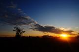 Seat Sunrise 2