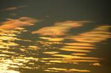 Sunrise Iridescence