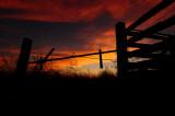 Fence Corner Sunset