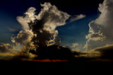 Backlit Cumulus Towers