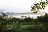 Cookridge Mist