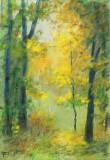 dans la Forêt Lointaine  --  fmr