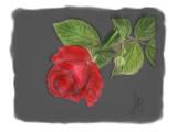Created on my iPad using SketchBook Pro