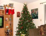 Christmas 2005 002.jpg