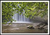 Leaf Obscured Minneopa Falls