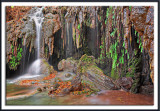 A Lush Grotto Near Navajo Falls