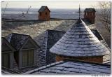 Toit de Westmount (Hiver) / Roof (Winter)