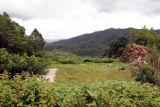 Near Pai.jpg