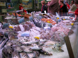 Fresh seafood at the City Market