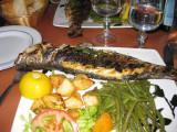 Grilled sea bass (bar)