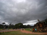 Terrance of the Elephants
