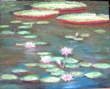 Splendor Lillies