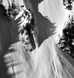 ying and yang of avalanche