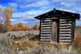 cabin in park