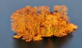 Island on Green Lake at sunset