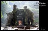Southern Laos 2004