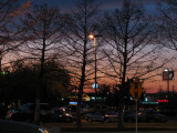 Last Sunset of 2008!