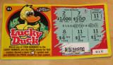 I am a Lucky Duck!