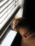 Waiting her turn