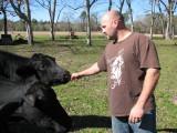 Jon feeding the cow