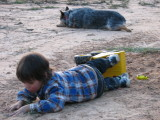 JoJo playing in the dirt & Harley too
