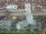 A Rainy Day 16 Feb. 2008
