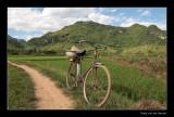 7877 Vietnam bike along the way