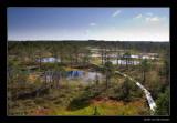 0858 Estonia, Laheema Nt Park