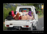 3517 Indonesia, Java, how many people fit in a pickuptruck?