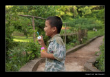 7399 Vietnam,  boy blowing bubbles